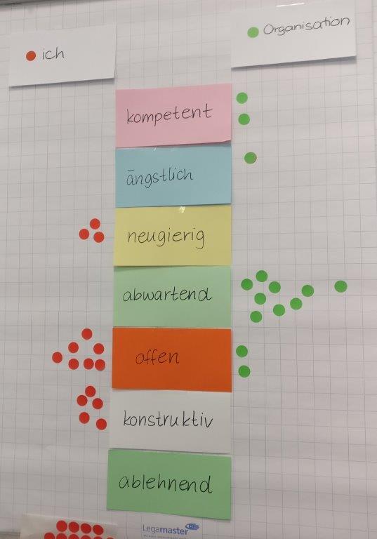 Workshopteilnehmer*innen wählen passende Adjektive in Bezug auf Digitalisierung für ihre Organisation und sich selbst